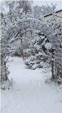 winter_01_200