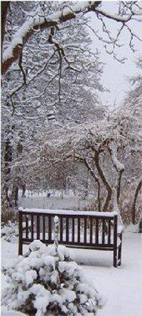 winter_02_200