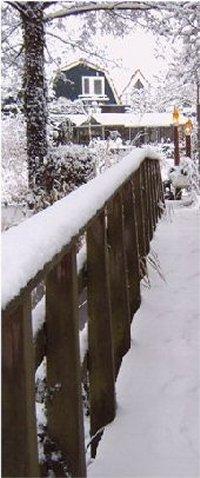 winter_05_200