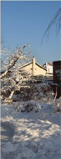 winter_06_200