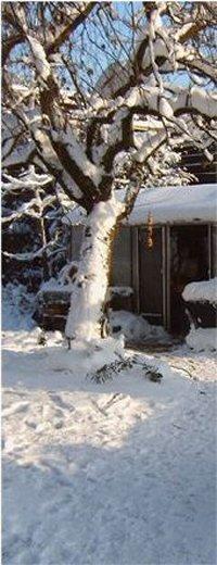 winter_07_200
