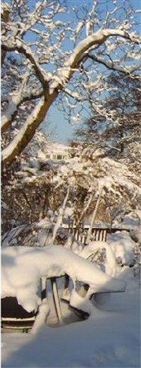 winter_09_200
