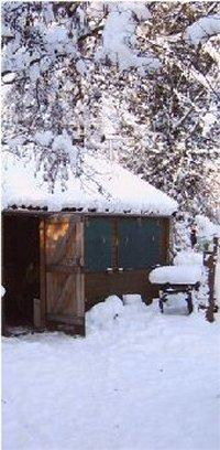 winter_10_200