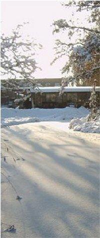 winter_11_200