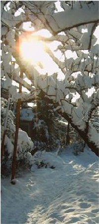 winter_12_200